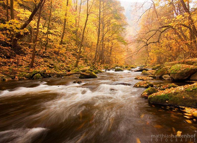 Herbst im Bodetal bei Thale