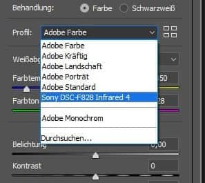 Adobe Camera RAW - Profilauswahl