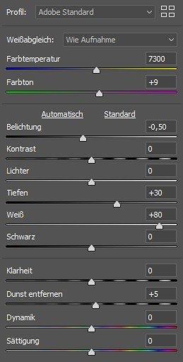 Einstellungen in Adobe Camera RAW