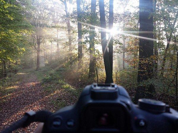Zum Fotografieren muss man nicht immer weit fahren