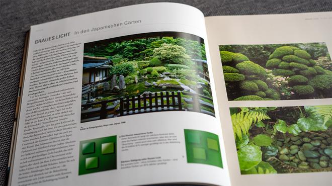 Graues Licht: In den Japanischen Gärten
