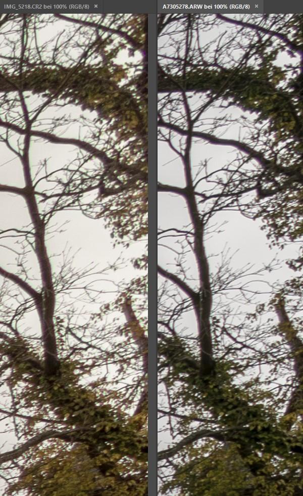 Crop/Vollformat Vergleich bei 10/16 mm - Ecke 2