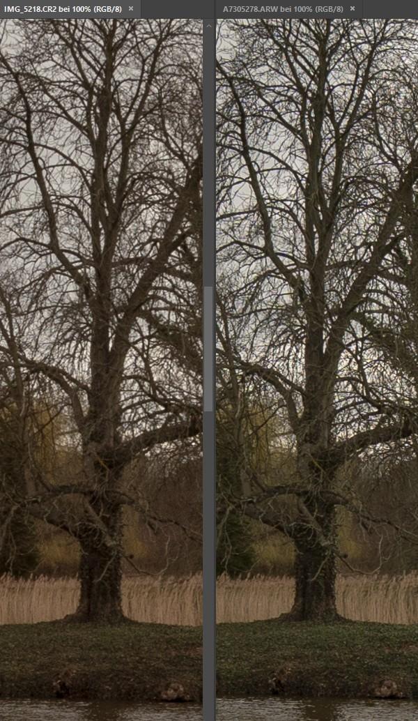 Crop/Vollformat Vergleich bei 10/16 mm - Zentrum 2