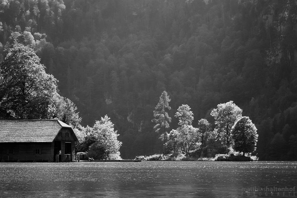 Am Königssee mit der kleinen Insel Christlieger und Licht wie gemacht für schwarz-weiß.