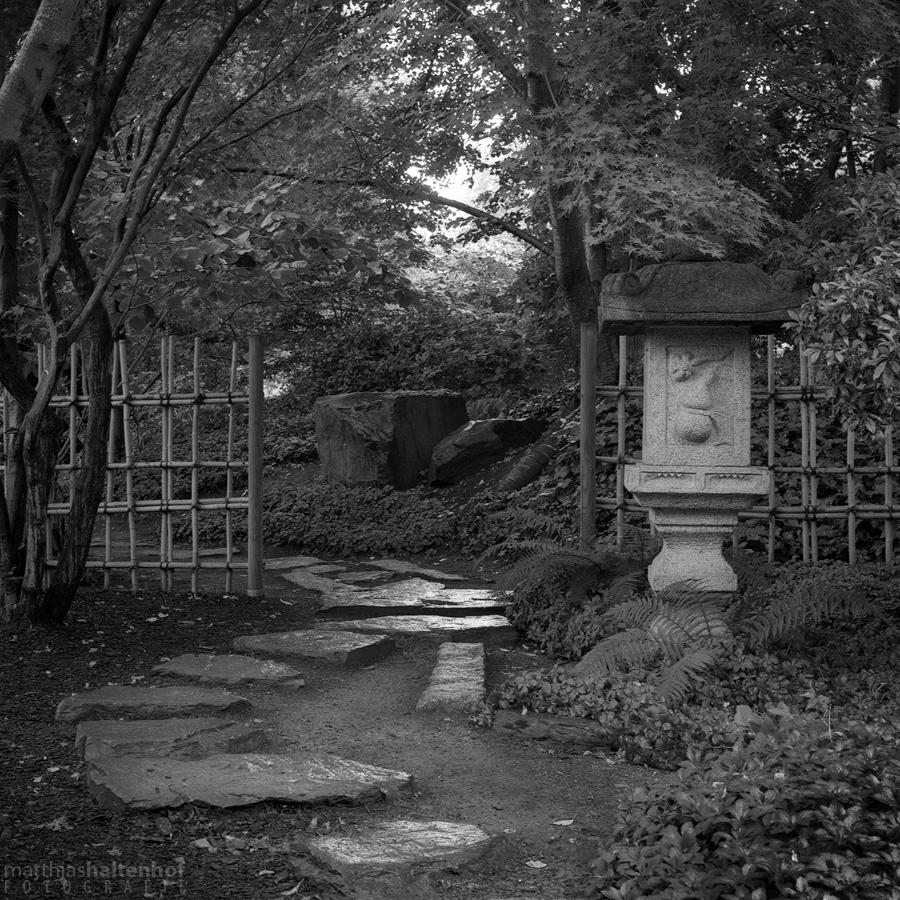 Japanischer Garten - egapark Erfurt 1