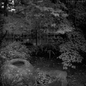 Japanischer Garten - egapark Erfurt 5