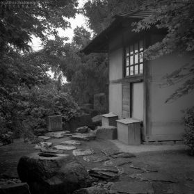 Japanischer Garten - egapark Erfurt 8