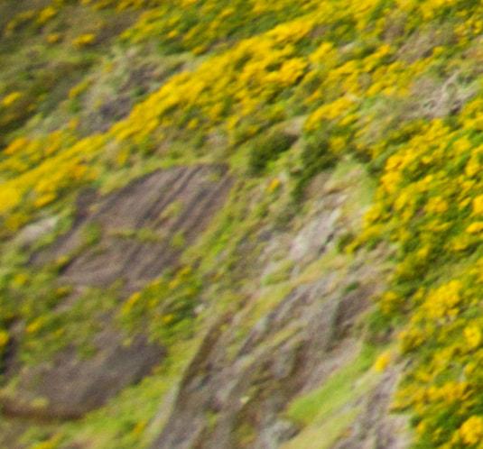 Linke untere Ecke von Madeira 03